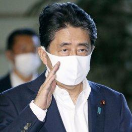 """安倍首相に""""がん説""""まで…日程次々キャンセルで自民党騒然"""