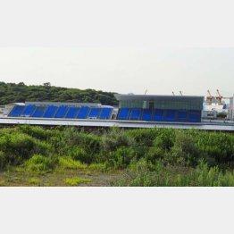 屋根が一部にしかかかっていない海の森水上競技場(C)日刊ゲンダイ