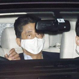 """安倍首相の持病悪化が招いた肝心コロナ対策の""""機能不全"""""""