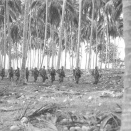 戦後75年たっても未だ戦地に取り残されている日本兵の遺骨