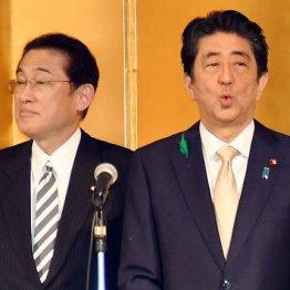 """総裁選""""菅圧勝""""ムード…安倍首相「3つの誤算」でさらに窮地"""