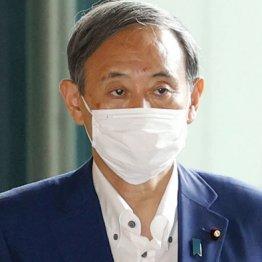 菅氏「党員投票すべき」発言ブーメラン 世襲制限も腰砕け