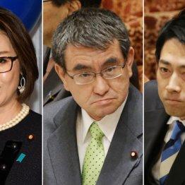 これが菅新政権「閣僚名簿」人気優先で解散総選挙へシフト