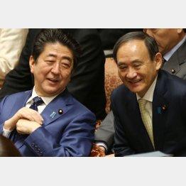 アベ政治を継承(C)日刊ゲンダイ