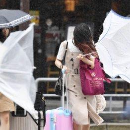次に備える台風対策の知識…ガラス飛散防止、避難開始は?