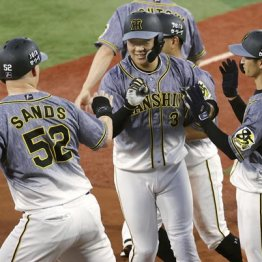 阪神優勝より大事 大山とサンズの本塁打数が気になる!