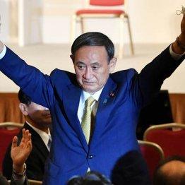 空っぽの菅総裁に雪崩の自民 この政権はおそらく短命<上>