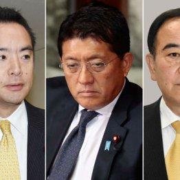 菅新内閣の不真面目3閣僚 デジタル担当相はワニ動画で物議