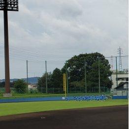 9月20日に試合が行われた球場(C)日刊ゲンダイ