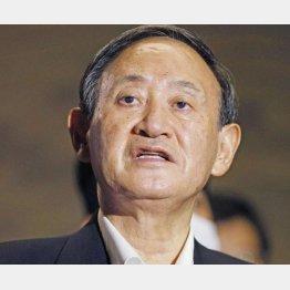 高支持率74%はイメージ戦略のたまもの(菅義偉首相)/(C)共同通信社