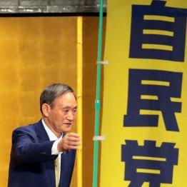 """菅首相が仕掛ける""""野党殲滅""""解散…年内なら歴史的勝利か"""