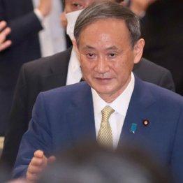 """""""売国の学者""""竹中平蔵氏に頼るスガノミクスの正体"""
