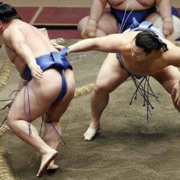 翔猿がV争いトップ 押し相撲で進化、出稽古禁止も追い風に
