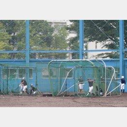 フリー打撃中に走塁練習はできる(C)日刊ゲンダイ