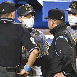コロナ騒動に情報伝達疑惑…阪神ドタバタ球界から総スカン