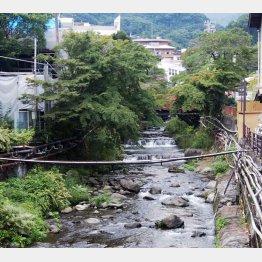 温泉観光地として知られる神奈川県湯河原町(C)日刊ゲンダイ