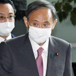 議員秘書時代の菅義偉は末端から先輩を蹴落としていった