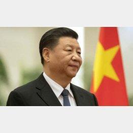 日本経済は中国次第(中国の習近平国家主席)/(C)AP=共同
