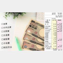 支出の全体像を把握する(C)日刊ゲンダイ