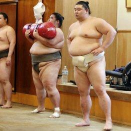 大相撲出稽古解禁でも痛しかゆし「一発で感染拡大」の恐怖