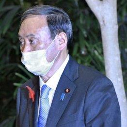 「政治の師」の反対押し切って横浜市議選に立候補した過去