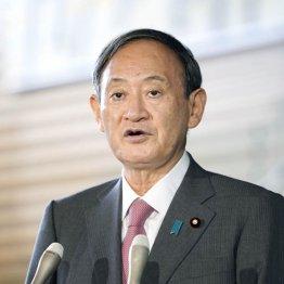 菅首相の懇親会参加の記者さん「汚れ仕事、ご苦労様です」