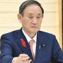 菅首相「名簿見ていない」発言は安倍前首相への責任転嫁か