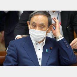 菅首相は国会審議に耐えられるのか(C)日刊ゲンダイ
