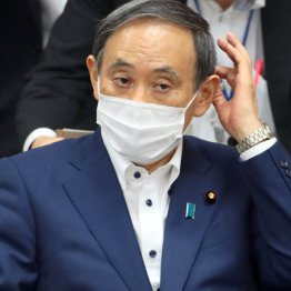 虚実入り混じる不気味な正体 菅義偉は首相の「器」なのか