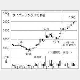 「サイバーリンクス」の株価チャート(C)日刊ゲンダイ