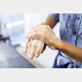 日本人の「手洗い習慣」は…