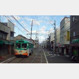 細い街路を単線で走り抜ける土電の路面電車(C)日刊ゲンダイ