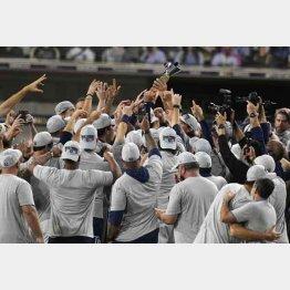 ワールドシリーズ進出を決め歓喜するレイズナイン(C)ロイター/USA TODAY Sports