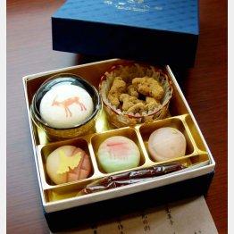 見た目にも美しい和菓子(C)日刊ゲンダイ