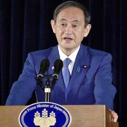 何が怖いのか 菅首相にひれ伏す異様な政党と腐敗マスコミ