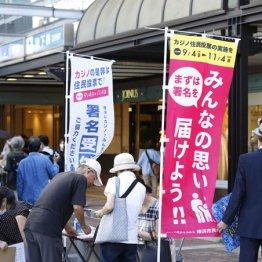 9カ月遅延が横浜市長選に影響 菅政権の苦しいカジノ推進