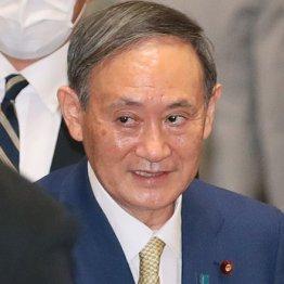 """菅首相の""""オトモダチ""""に「公有地払い下げ」の異様な経緯"""