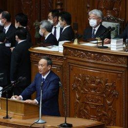 菅首相「代表質問」答弁でブチ切れたヤジは「独裁者!」
