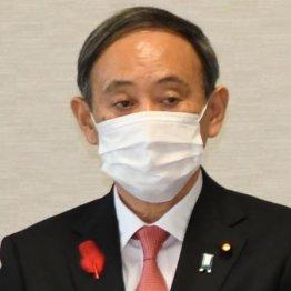 菅首相資産6277万円 自宅億ション1850万円評価のカラクリ