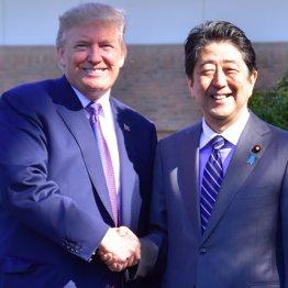 """トランプ勝利なら外交特使に 安倍前首相""""再々登板""""への道"""