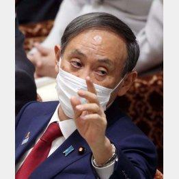 タジタジ答弁(4日の衆院予算委での菅首相)/(C)日刊ゲンダイ
