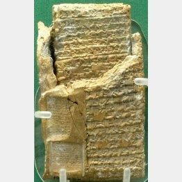 写真④ 二重になった粘土板文書(C)Wikimedia Commons