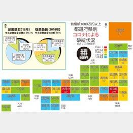 02表①:都道府県別コロナによる破綻状況、表②日本企業の内訳と従業員数(C)日刊ゲンダイ