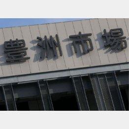 豊洲市場(C)日刊ゲンダイ