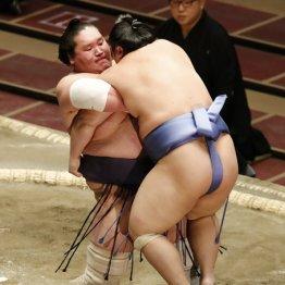 照ノ富士は131キロあっさり吊り出し…力技で膝は大丈夫?