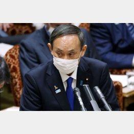 菅首相、「答弁を差し控えさせていただきます」をすでに100回近くも連発(C)日刊ゲンダイ