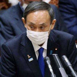"""菅首相はおっかなびっくり""""地雷原""""を歩む心境か"""