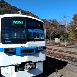 「埼玉県民の日」のフリー切符を利用して見頃の紅葉を満喫