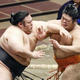 志摩ノ海を突き動かす「師匠と野望」 幕尻でもV争い大躍進
