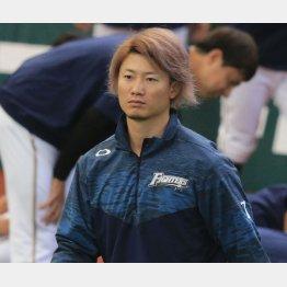 西川はメジャーとの交渉次第で…(C)日刊ゲンダイ